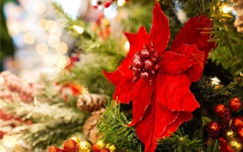 Christmas decor red flower